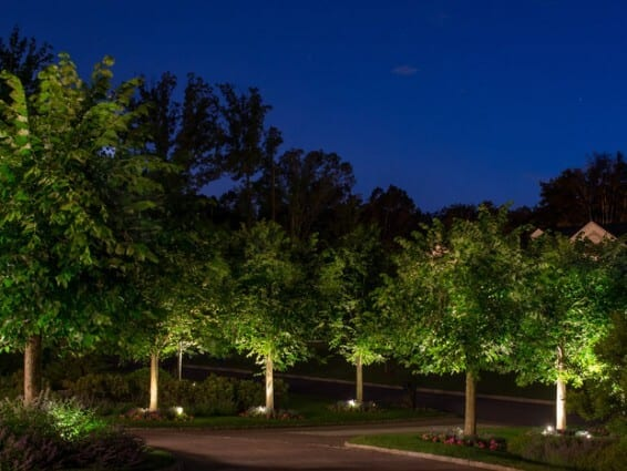 Landscape Light Ideas