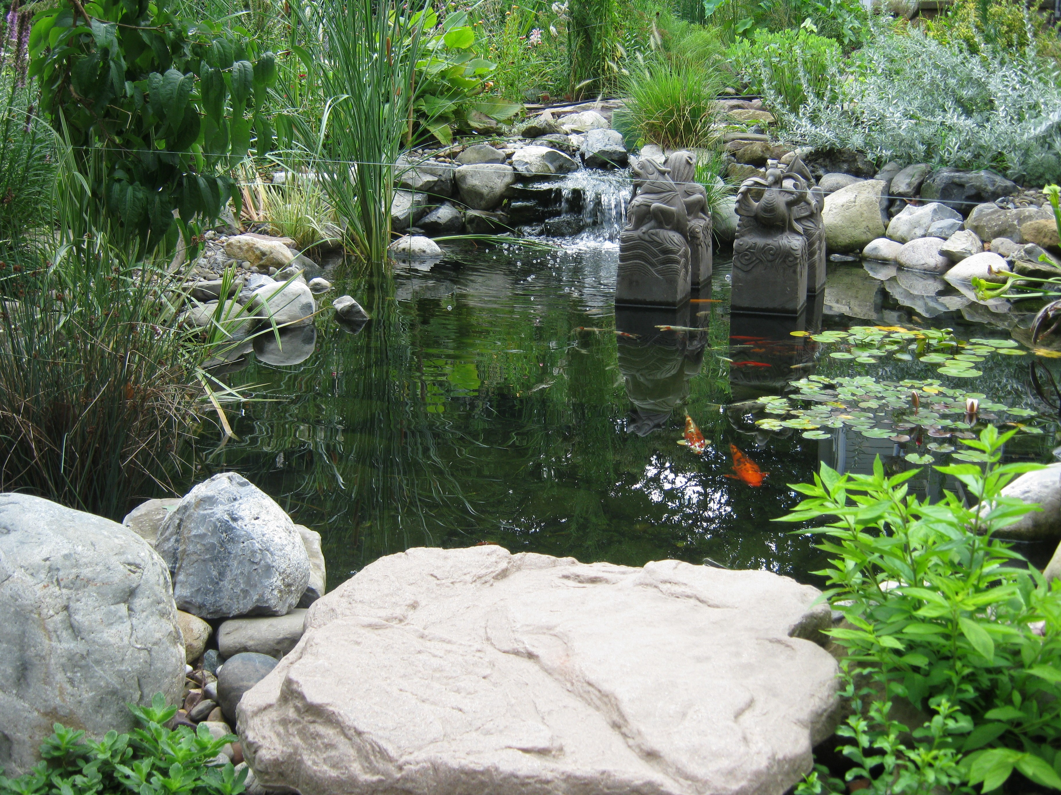 pond, water feature, boulder