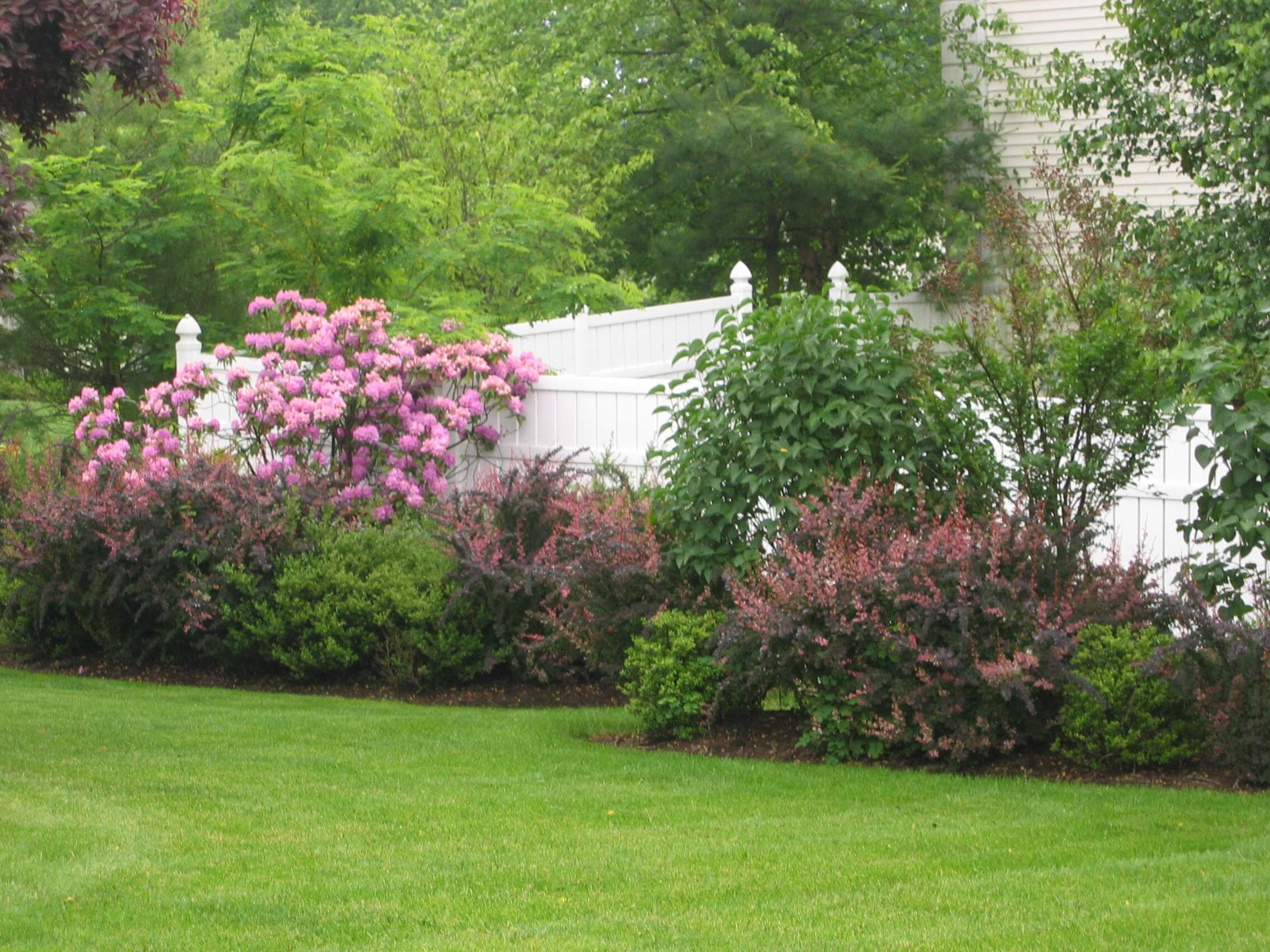 Feeding Your Plants & Lawn