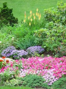 flowers, landscaping