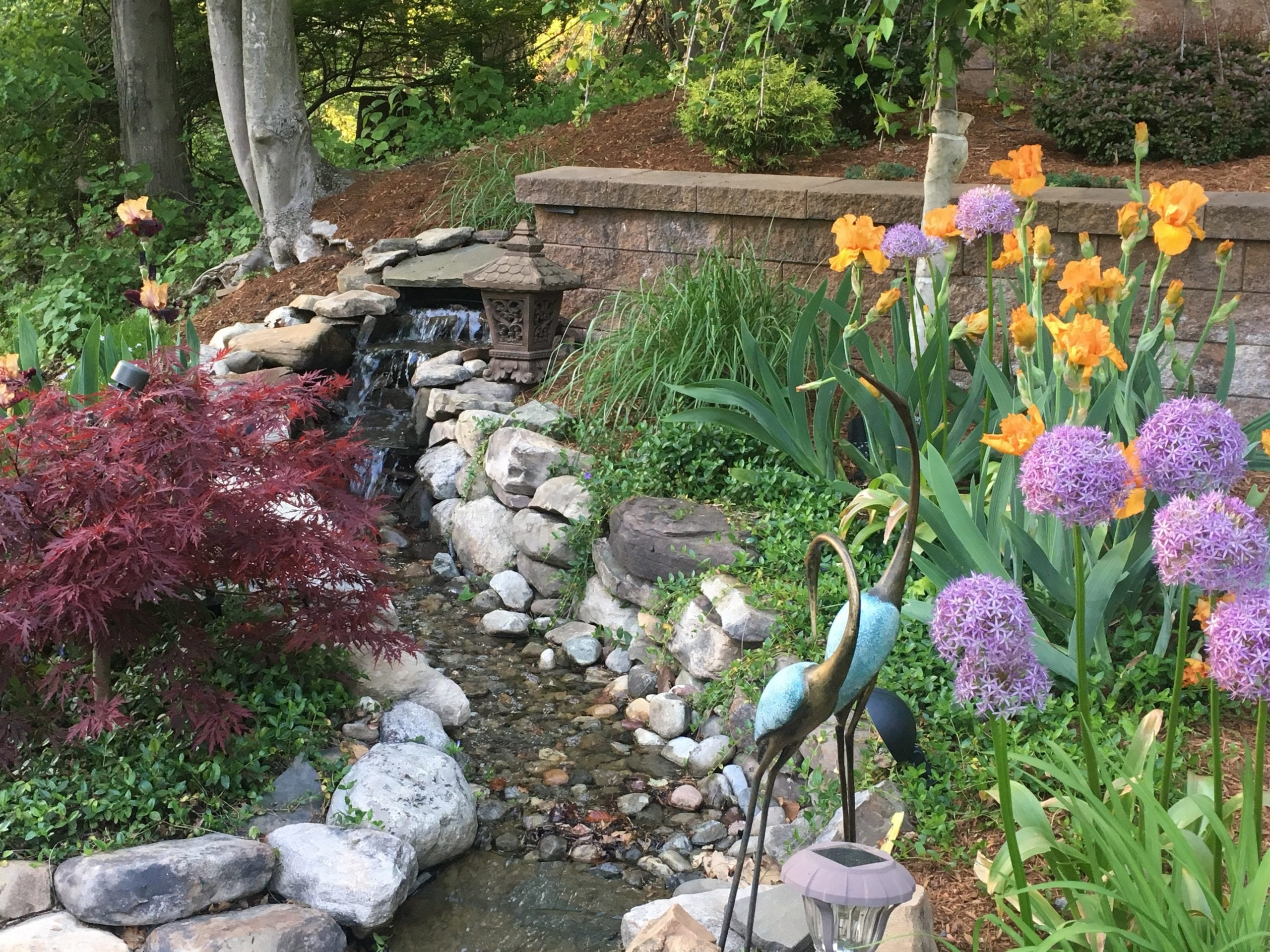 Top 10 Landscape Design Apps Parker Homescape