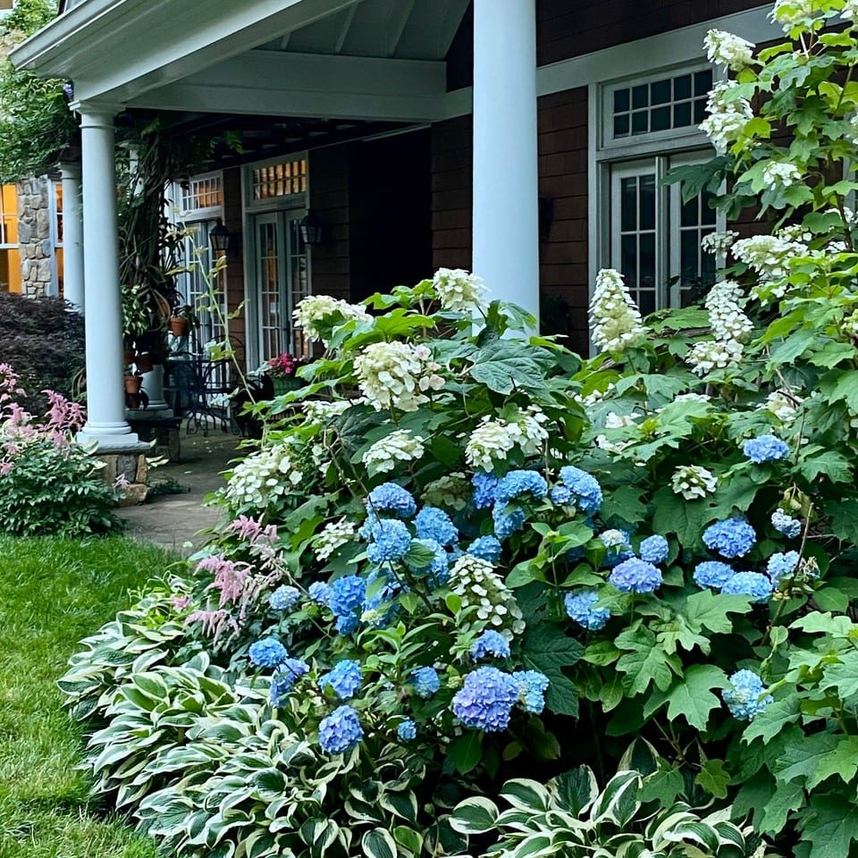 Chatham, New Jersey Landscaping Services